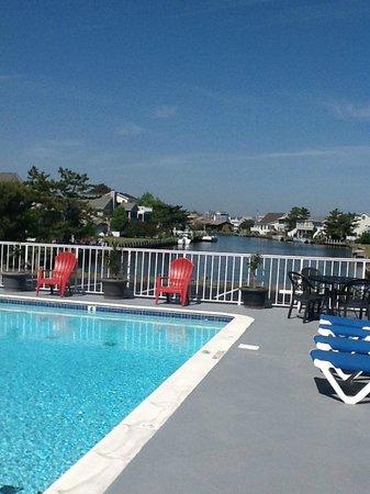 Fenwick Islander Motel: Pool area