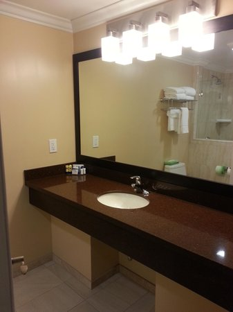 BEST WESTERN PLUS Airport Plaza: shower