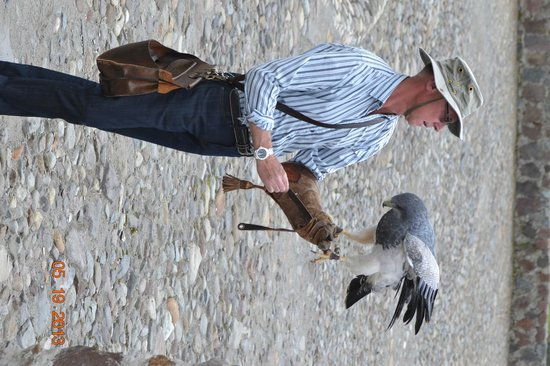 Parque Cóndor: the dutchman wth his bird