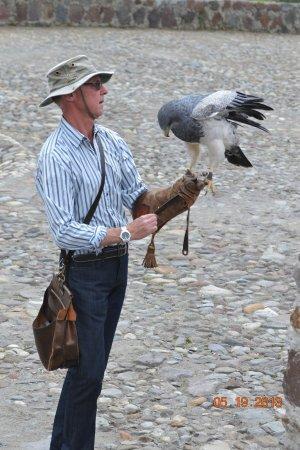 Condor Park : the dutchman wth his bird