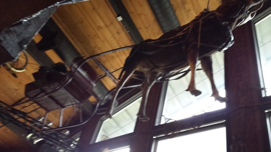 Mangy Moose Restaurant and Saloon : Mangy Moose