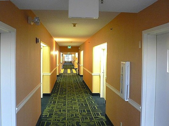 SummerPlace Inn: Hallway