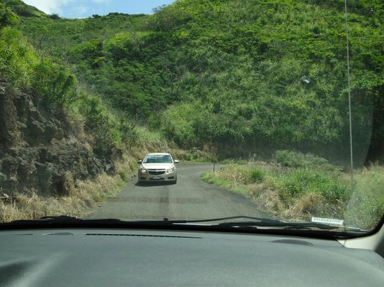Haleakala Highway (Crater Road): we had to back up so he could get by