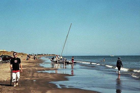 Helen's Waikanae Beach B&B / Homestay: Fun on the beach