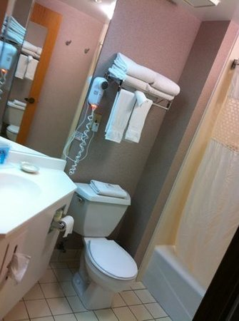 Hampton Inn Syracuse North (Airport Area): nice bathroom