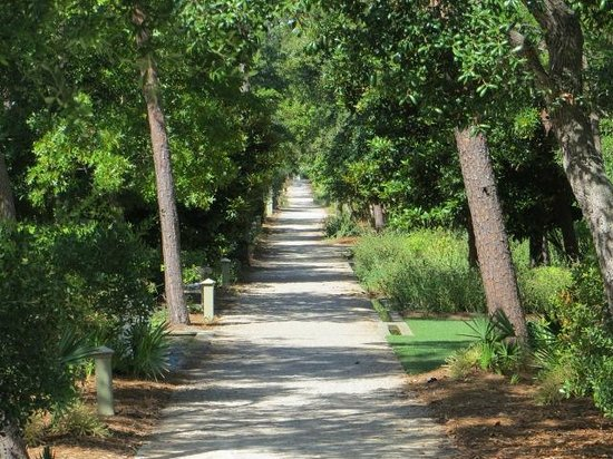 Inlet Beach, FL: Bicycle path in Rosemary Beach, very upscale community, ride around through the back streets and