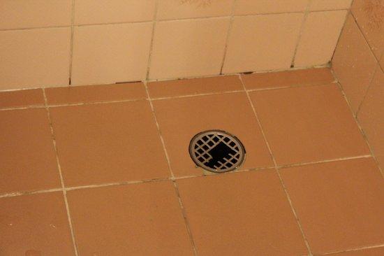 Home Green Home: Ralo do banheiro quebrado
