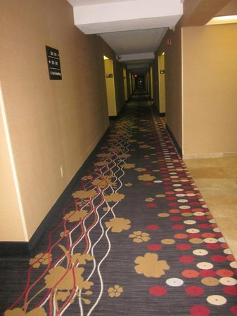 Hampton Inn Scranton at Montage Mountain: Hallway