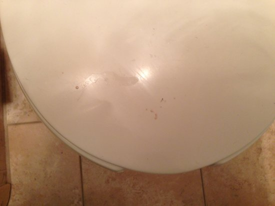 Ramada State College Hotel & Conference Center : Something disgusting on toilet lid
