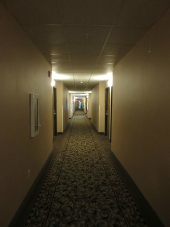 Quality Inn : Hotel