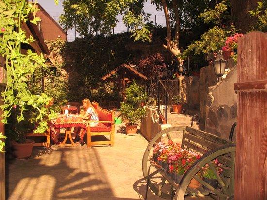 Stone Hotel : Backyard Garden with an 800 year old cistern