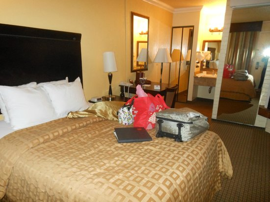 Stargazer Inn and Suites: 1st Room