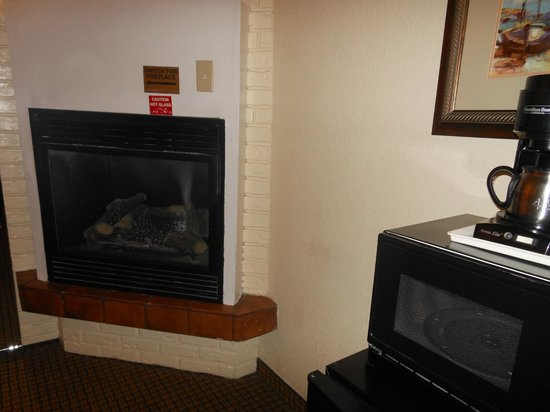 Stargazer Inn and Suites: Fireplace