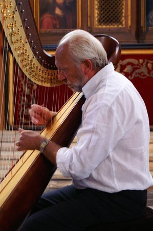 Luc Vanlaere Harpist: getlstd_property_photo