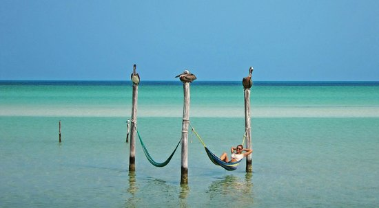 Villas Flamingos: Hammocks