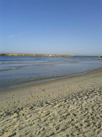 Dan Accadia Hotel Herzliya: beach