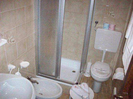 Albergo Ristorante Cavallino: bagno