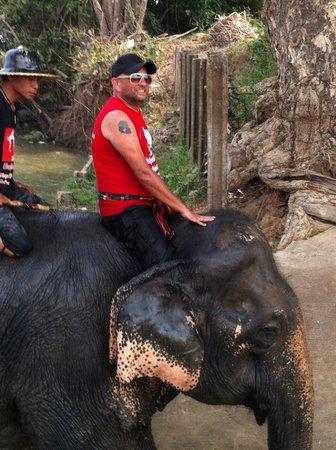 Elephantstay : Yitor & me