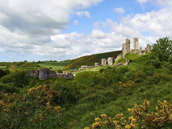 Olivers: Corfe Castle