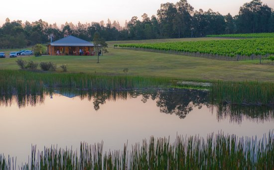 Ironstone Estate : Lodge and vineyard