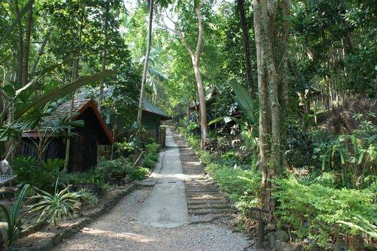 Nirvana Resort Koh Chang: Der Weg zu unserem Zimmer (rechts hinten im Eck)