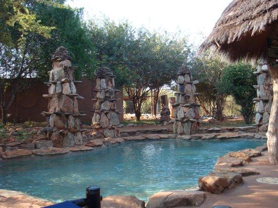 Makalali Private Game Lodge: The pool