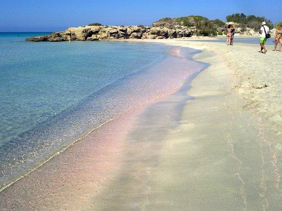 Aris Hotel: Spiaggia di Elafonissi (sabbia rosa!)