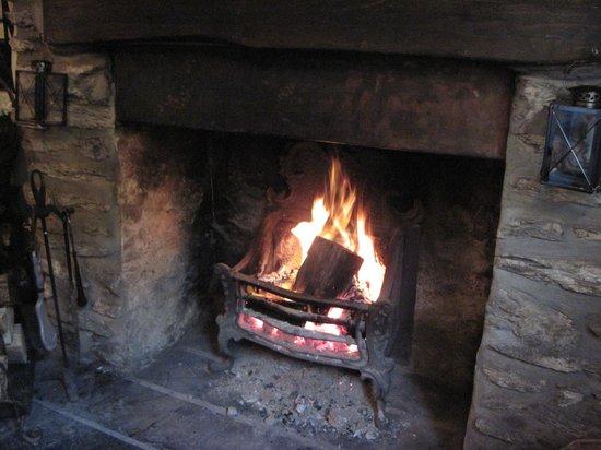 The Rockford Inn : Log Fire in the bar