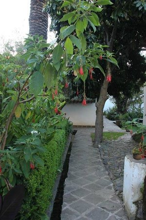 El Albergue Ollantaytambo : hotel garden