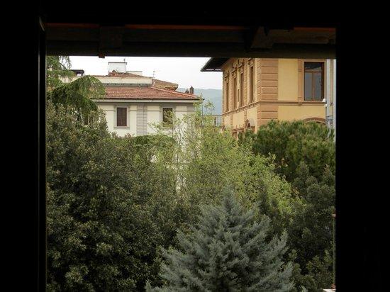 Hotel Panama: Questa è la vista dalla finestra, sul verde, ed è garanzia di traquillità per la notte