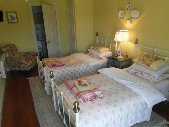 Hilltop House Bed and Breakfast: twin room