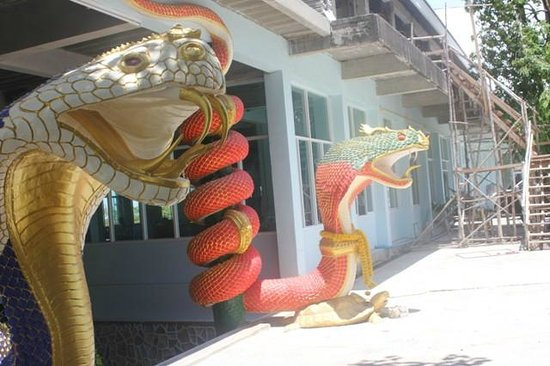 Elephant Village: Snake heads at the temple
