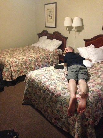 Smokyland Motel: Room