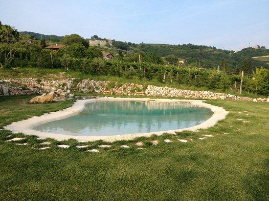 Agriturismo La Perlara: Piscina privata