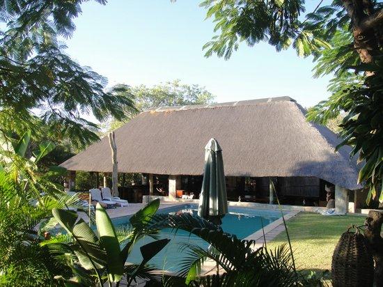 Timbavati Safari Lodge: The pool and bar!