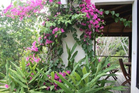Casa Frangipani: Bungalow