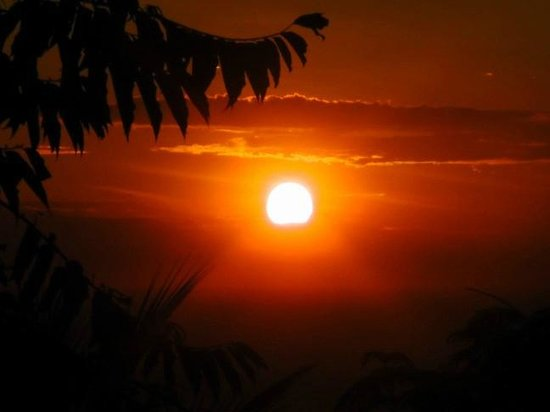 Casa Frangipani : sunrise from the roof