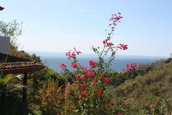 Casa Frangipani : view from the roof