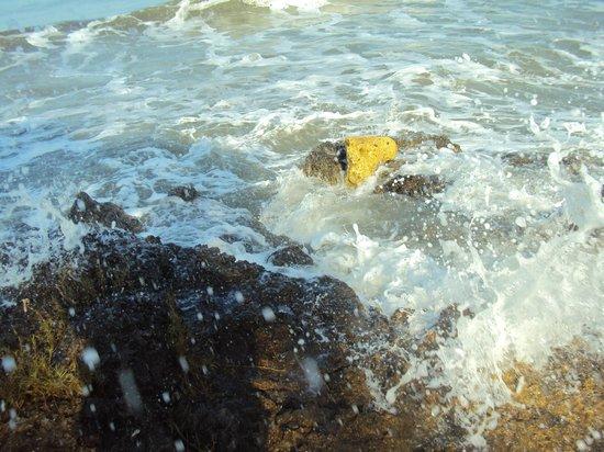 Manzanillo del Mar : Mar .la vida es mas sabrosa
