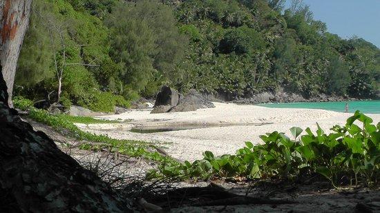 Blue Lagoon Chalets: Einer der Strände in der Nähe