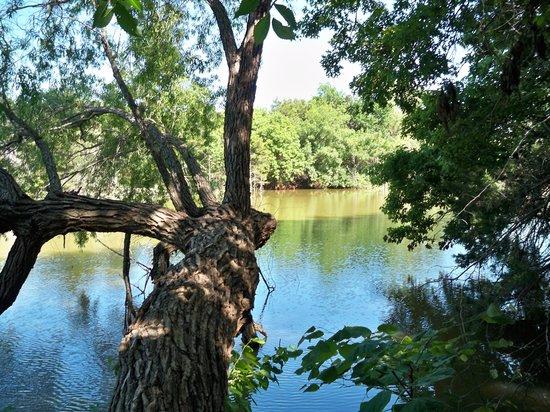 El Reno West KOA : Pond--lots of trees obstructing view