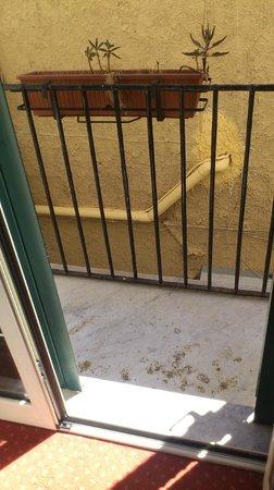 Massimo Plaza Hotel : Il balcone poco pulito