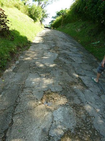 Poppy's on the Lagoon: Access Road in disrepair