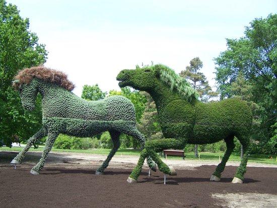 Jardin japonais au printemps photo de jardin botanique for Au jardin de fanny montreal