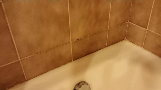 ATAHOTEL Contessa Jolanda: mold in shower