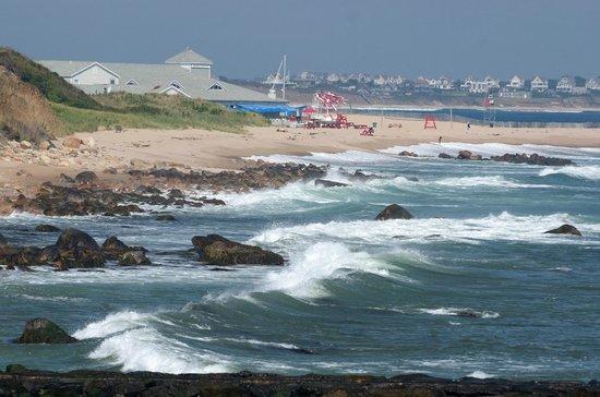 Island Manor Resort: Surfs Up