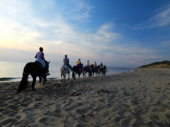 Island Manor Resort: Horseback Riders at Dusk