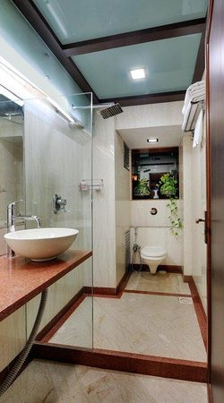 Hotel Regal Enclave: Terrace Bathroom