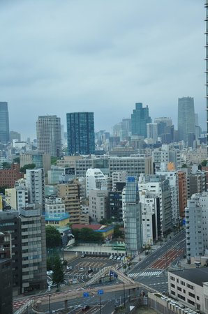 Hotel Villa Fontaine Tamachi: View from room