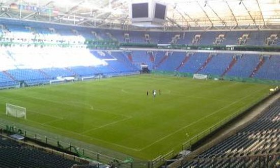 Veltins Arena : フィールド